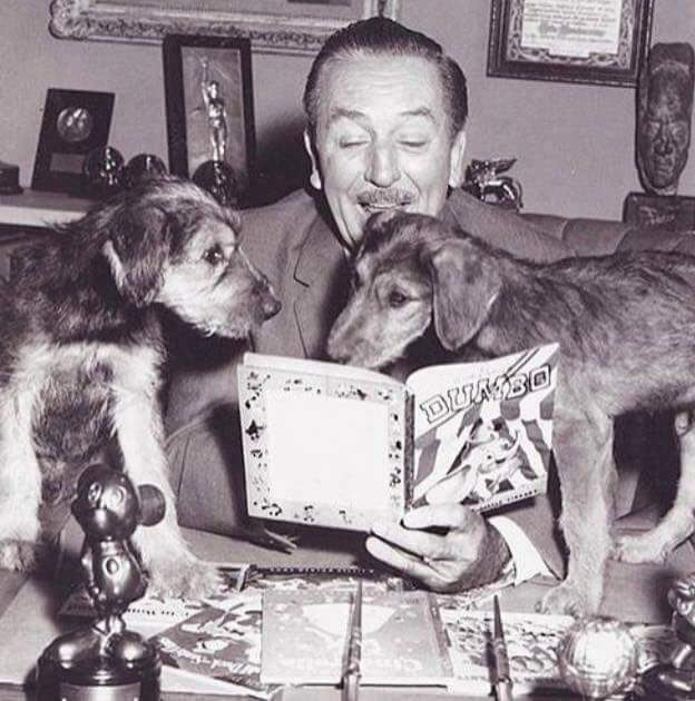 Walt Disney with Airedale Puppies