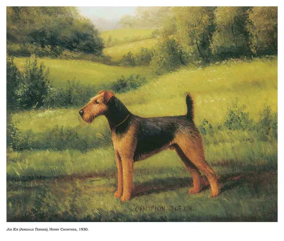 Joe Kin, Airedale Terrier 1930